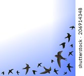 flying swifts illustration with ... | Shutterstock .eps vector #206914348