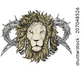 sketch of tattoo lion with... | Shutterstock .eps vector #207048526