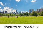 new york   june 14  people... | Shutterstock . vector #207050212