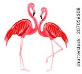 couple  of pink flamingos   | Shutterstock .eps vector #207056308
