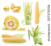 collections of fresh raw corn... | Shutterstock . vector #207370336
