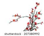 chinese element  plum blossom | Shutterstock . vector #207380992