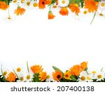 Frame Of Chamomile And...