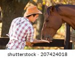 Cowboy Feeding A Horse Out Of...