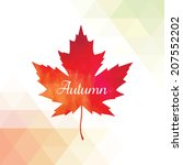 vector background with autumn... | Shutterstock .eps vector #207552202