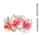 poppies. red flowers.... | Shutterstock . vector #207674548