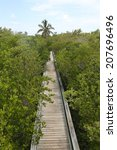 golden orb trail boardwalk | Shutterstock . vector #207696496