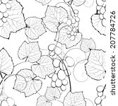 creative grape background  | Shutterstock .eps vector #207784726