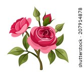 Branch Of Red Roses Isolated On ...