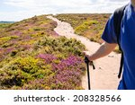 Small photo of Nordic walking in Brittany. A man holding a alpenstock. A road through the fields covered with yellow gorse and violet heather flowers. Cap Frehel, France. Travel concept.