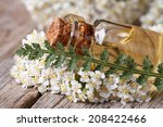 Постер, плакат: extract of yarrow in