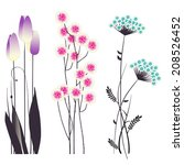 floral background  blooming... | Shutterstock .eps vector #208526452