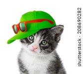 Kitten With Green Cap On White...