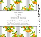 wedding invitation cards with... | Shutterstock .eps vector #208758676