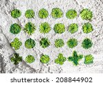 trees top view for architecture ... | Shutterstock . vector #208844902