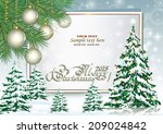 christmas card with christmas... | Shutterstock .eps vector #209024842