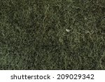 scotch brite texture | Shutterstock . vector #209029342