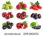 sweet berries on white... | Shutterstock . vector #209180452