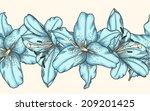 beautiful seamless horizontal... | Shutterstock .eps vector #209201425