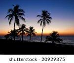 a beautiful sunset on sanibel... | Shutterstock . vector #20929375