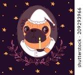 pug in nightgown and nightcap... | Shutterstock . vector #209293966