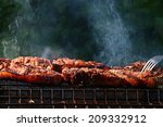 grilled meat skewers  barbecue | Shutterstock . vector #209332912