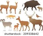 forest animals | Shutterstock . vector #209338642