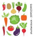 vegetables set. vector... | Shutterstock .eps vector #209525995