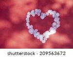 the heart shaped petals of... | Shutterstock . vector #209563672