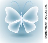 transparent butterfly on gray... | Shutterstock . vector #209651626