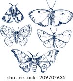 Set Of Butterflies  Ink Drawing ...