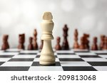 chess board with chess pieces... | Shutterstock . vector #209813068