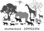 african savannah and differnt... | Shutterstock .eps vector #209902396