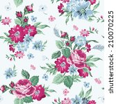vintage floral background  ... | Shutterstock .eps vector #210070225