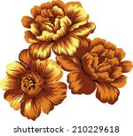 orange yellow rose. | Shutterstock .eps vector #210229618