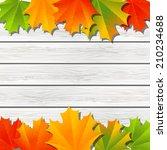 autumn maple leaves on wooden...   Shutterstock .eps vector #210234688