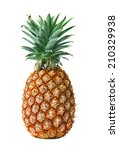 pineapple isolated on white... | Shutterstock . vector #210329938