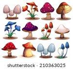 illustration of a set of... | Shutterstock .eps vector #210363025