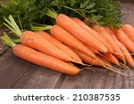 Fresh Carrot Bunch On Grungy...