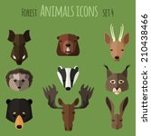 forest animals icons with flat... | Shutterstock .eps vector #210438466