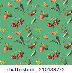 beautiful chokeberry  rowan... | Shutterstock . vector #210438772