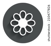flower with petals sign icon....