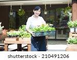 the female clerk in the flower... | Shutterstock . vector #210491206