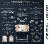 vector set vintage ornate.... | Shutterstock .eps vector #210501055