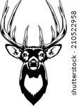 whitetail deer head. vector... | Shutterstock .eps vector #210522958