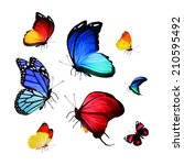 collection of different bright... | Shutterstock . vector #210595492