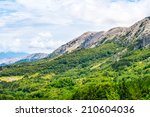 green valley in croatia  krk | Shutterstock . vector #210604036