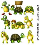ilustration of a set of turtle... | Shutterstock .eps vector #210691825