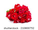 bouquet of red roses on a white ... | Shutterstock . vector #210800752