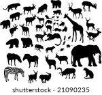 illustration with large animal... | Shutterstock .eps vector #21090235